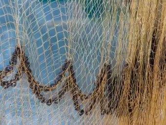 Hemp Nets